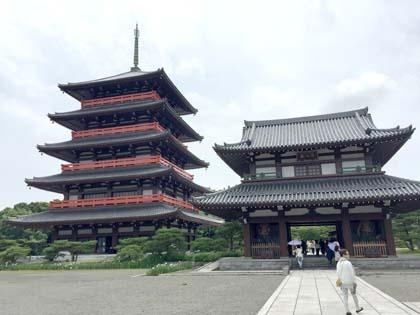 誕生寺の五重塔