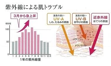 紫外線グラフのみ.jpg