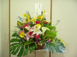 アミーゴたちからのお花