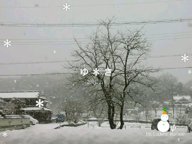 2014-2-8雪だるま0001.jpg