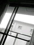 20060806_199917.jpg