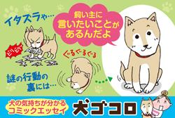 1108犬ゴコロ/ハガキ