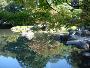 旧古河庭園_日本庭園