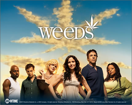 Weeds ママの秘密 シーズン1 シーズン1