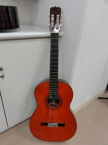 家内のギター