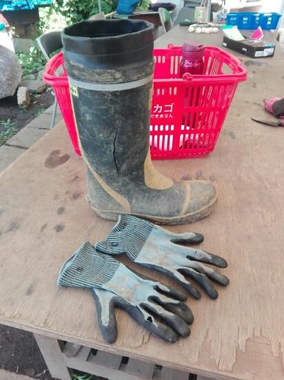 長靴と手袋