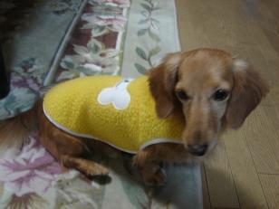 黄色ボアコート