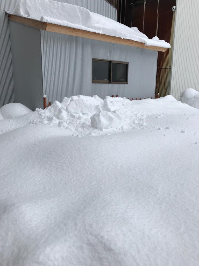大雪_店の裏