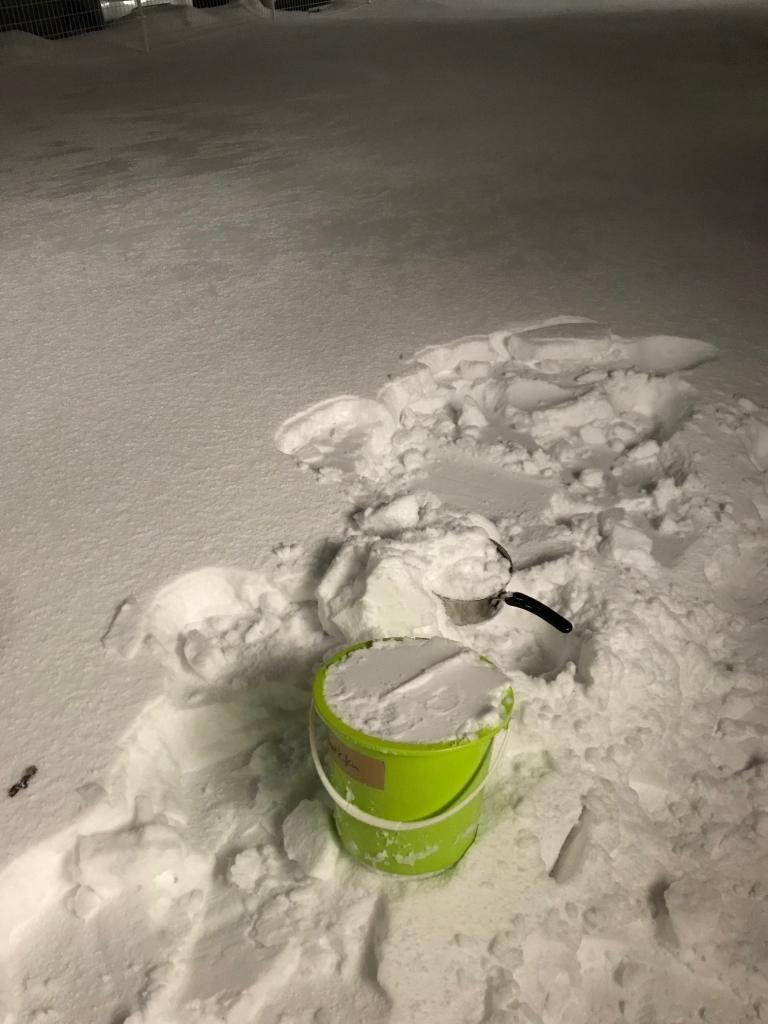 バケツの雪