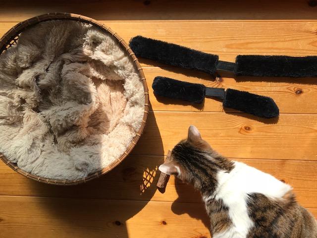 猫の寝床_掃除