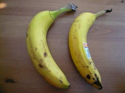 バナナ比較