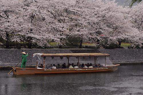 雨の遊覧船