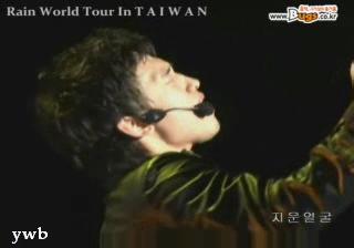 taiwan_bugs