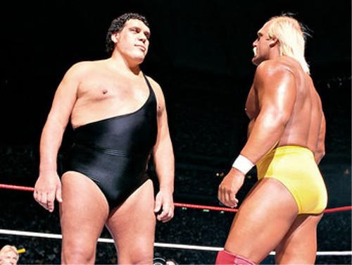 WWEの噂・裏技・裏話_アンドレ・ザ・ジャイアント対ハルク・ホーガン