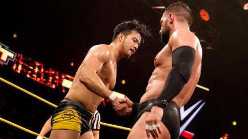 WWEの噂・裏技・裏話_元WWEディーヴァが政界へ