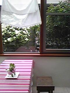Image327.jpg