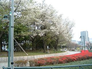 松ヶ枝埠頭