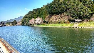 有田で春時間