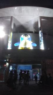 夜の長崎ペンギン水族館