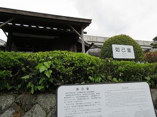 永井隆記念館前の御衣黄