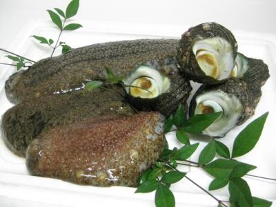 海鼠とサザエ