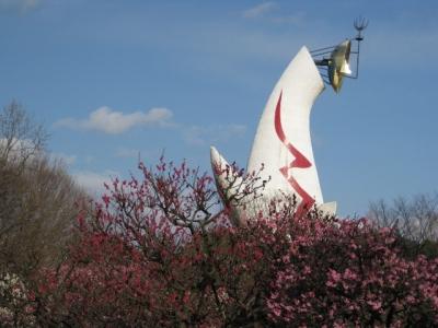 自然文化園の梅と太陽の塔