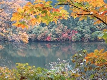 大源太湖畔の紅葉