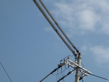 鳥害防止材料をつけられた電柱電線