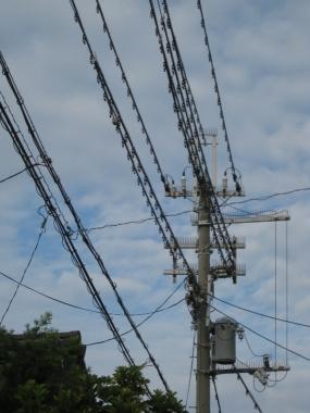 鳥害防止材料 電柱・電線に