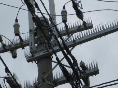 鳥害防止材料電柱・電線に