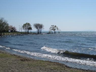 豊公園の琵琶湖畔