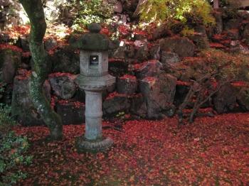 霊鑑寺庭園の燈籠と散り紅葉