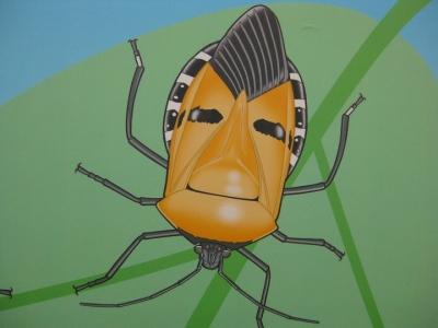 昆虫館のジンメンカメムシのパネルより