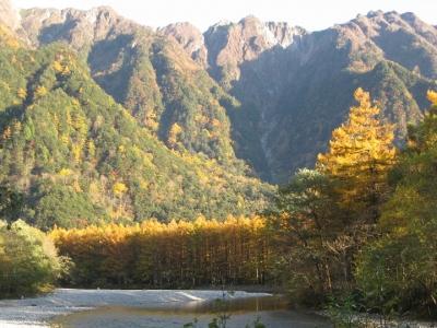 霞沢岳と黄金色に輝くカラマツ林