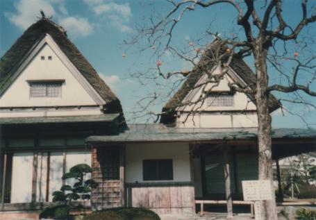 酒井田柿右衛門お屋敷と象徴の柿の木
