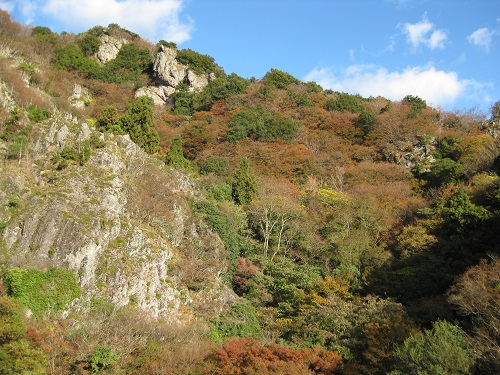 寒霞渓の崖と盛りを過ぎた紅葉