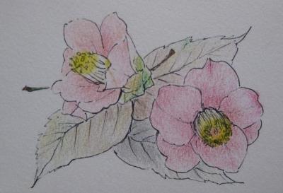 落ち椿と桜落ち葉のスケッチ