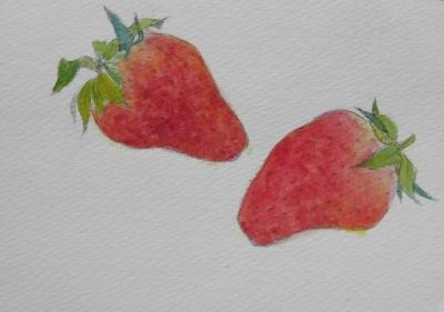 イチゴのスケッチ 3