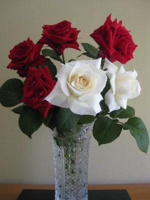 白いバラ パスカリの生け花