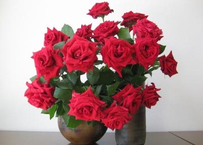 カールレッド 生け花