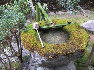 苔むした手水鉢