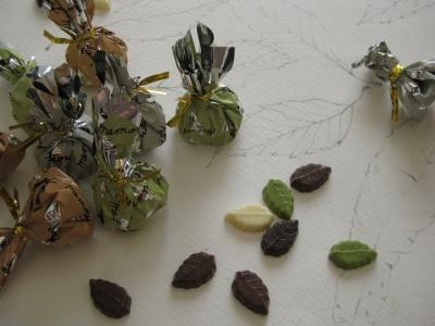 落ち葉のスケッチとリーフメモリー チョコ