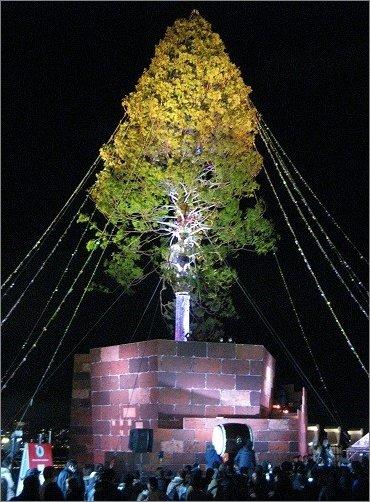和太鼓の音と共に耀くアスナロのツリー