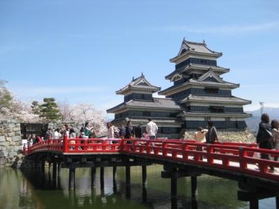 松本城と桜