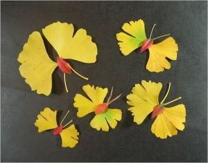 イチョウ黄葉・落ち葉絵の蝶々