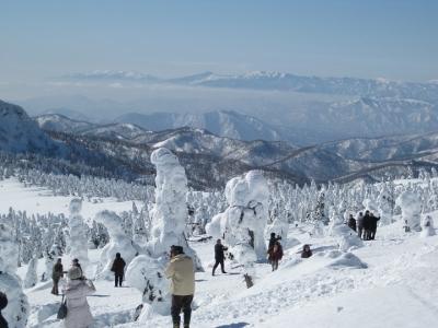 遠くに吾妻連峰が望める     樹氷原