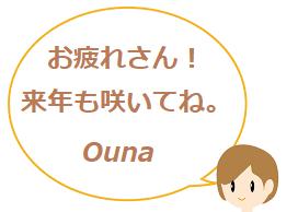 お疲れさん! 来年も咲いてね。 Ouna