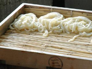 三島製麺所_茹で上がり直後のうどんさま