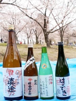 お花見といえば日本酒