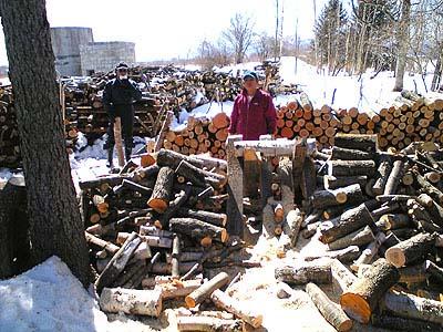 薪の玉切り作業